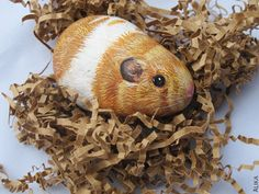 Painted rock stone art hamster reserved for Anel by artalika