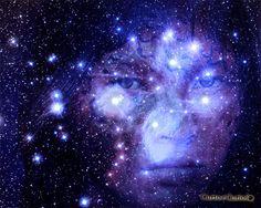 Deusa da lavoura e das moradias, representada pela estrela mais brilhante da constelação de Plêiades. Quando na Terra, era mãe de Jurupari, o enviado do Sol/Guaraci, se submeteu ao novo método patriarcal das tribos. As mulheres não podiam participar dos rituais de Jurupari, pois os deuses matariam a intrusa. Certa vez, Ceuci com saudade de seu filho, aproximou-se dele durante um cerimonial, e foi quando ela foi atingida por um raio, enviado por Tupã.