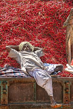 rajasthan man, india...bed of chili...Hot Bed!    Alika