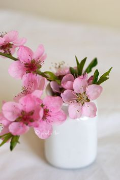 Friday Flowers Hristos a inviat! My Flower, Cherry Blossom, Flower Arrangements, Bouquet, Vase, Garden, Decor, Floral Arrangements, Garten