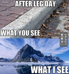 leg day | Yes, and don't let it be stairs or a hill. I'd really rather just physically roll down it/them. Lol