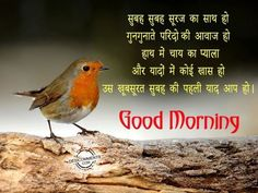 Hindi Good Morning Quotes, Sunday Quotes Funny, Good Morning Images Hd, Good Morning Gif, Good Morning Wishes, Goodnight My Love Quotes, Romantic Good Night Image, Good Morning Animation, Love Quotes For Wife