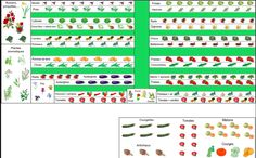 Plan Potager, Potager Bio, Garden Crafts, Garden Fun, Amazing Gardens, How To Plan, Panda, Gardening, Gardens