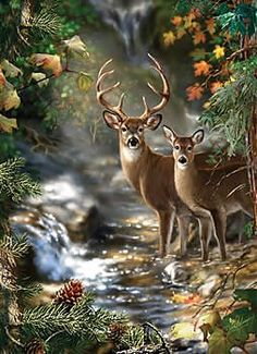 Deer Creek jigsaw puzzle by Masterpieces