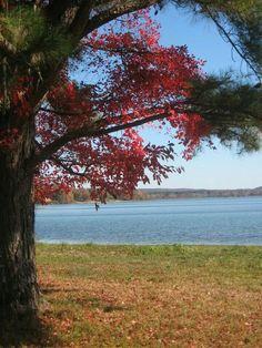 Waterloo, Alabama- Fall time in North Alabama. Bumpass Creek Road looking toward Second Creek. S.Chabera