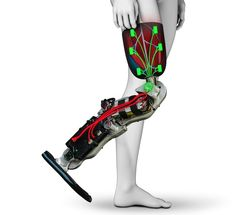 The Symbionica project hopes to produce high-quality prosthetics and bionics Prosthetic Leg, Robot Arm, Science And Technology, Legs, 4 Life, Brain, Future, Design, Backgrounds