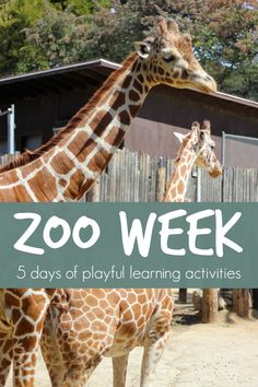 Zoo Week {Playful Learning Activities for Kids}