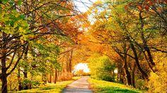Осень - это время воспоминаний...