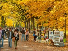 All the NYC October activities you need to know about.