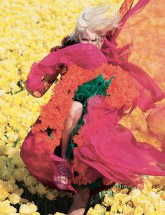 Viviane Sassen Viviane Sassen, In Bloom (For 'Dazed & Confused'), 2011