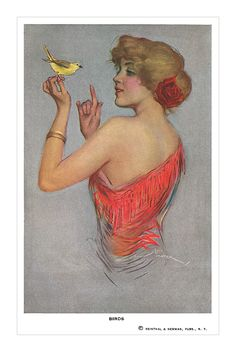 Birds' postcard  by Lou Mayer