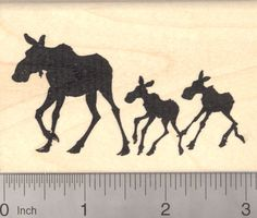 Moose Cow with Calf Twins in Silhouette Rubber Stamp >>> For more information, visit image link. Moose Silhouette, Silhouette Painting, Silhouette Projects, Steller's Sea Cow, Rubber Stamp Maker, Uncle Sam Costume, Moose Tattoo, Moose Pictures, African Buffalo