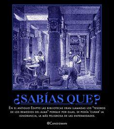 """#SabiasQue En el antiguo #Egipto las #Bibliotecas eran llamadas los """"tesoros de los remedios del #Alma"""" porque por ellas, se podía 'curar' la #Ignorancia, la más peligrosa d…"""