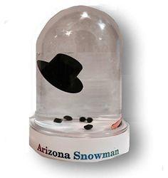 Original Melted Snowman Snowglobe - Arizona Snow Globe