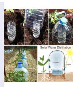 Easy watering idea