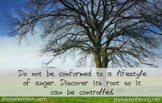 Great post reminding us how anger hurts our children and 3 ways we can control it!