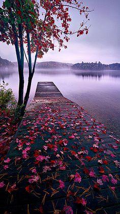 World Best Things: Beautiful Nature Lake Dock, Thousand Islands, Canada Beautiful World, Beautiful Places, Beautiful Scenery, Amazing Places, Natural Scenery, Beautiful Beautiful, Lake Dock, Boat Dock, Jolie Photo
