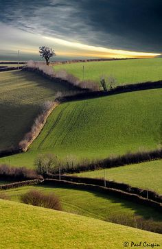 North Molton, Devon. Looks like a David Hockney painting!