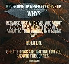 Sonia Ricotti Quotes - Never Give Up