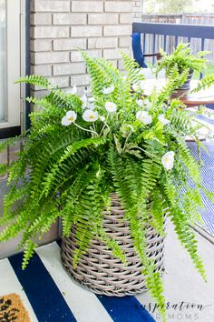 One of my favorite ways to dress up our front porch is with pretty planter. Of course, with every season they change. Sometimes I plant flowers, sometimes the planters hold mini trees. Heck, sometimes the planters are baskets and not pots! This summer I decided to keep things simple and easy with some gorgeous poppy and fern front door planters. So easy to make! front door decor   front door planters   porch planters   modern front door   easy door decor   fern   poppy   summer decor   summer Small House Decorating, Farmhouse Style Decorating, Porch Decorating, Farmhouse Decor, Summer Decorating, Decorating Tips, Front Door Planters, Diy Planters, Front Door Decor