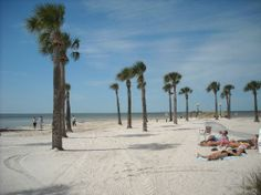 pine island park spring hill florida | Sandy Beach - Picture of Weeki Wachee, Florida - TripAdvisor