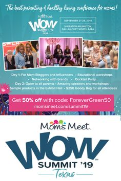 Moms Meet WOW Summit Texas is the best parenting & healthy living conference for moms! If leading a healthy life is for you, join us! Healthy Life, Healthy Living, Dallas Fort Worth Texas, Good Parenting, Ticket, Conference, Health And Wellness, Blogging, Rocks