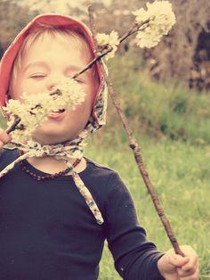 Spring!   Flickr - Photo Sharing!