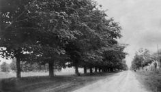 Photograph of Thornton Rd- Taken from mile north of Kingston Road (King Street), c. Street Names, Road King, Durham, Kingston, Photograph, History, City, School, Places