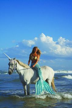 A mermaid on a unicorn!  I'd take any or all of the above! I love these Mahina Mermaid fins!