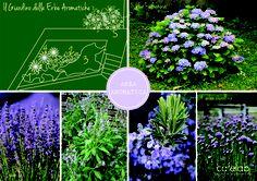 Coffee Break | The Italian Way of Design: Un giardino in blu | work in progress