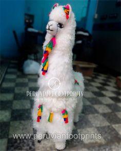Large white stuffy alpaca | Alpaca Fur Stuffed Animal 39 Alpaca Toy, Suri Alpaca, Baby Alpaca, Big Stuffed Animal, Alpaca Stuffed Animal, Handmade Soft Toys, Large White, Guinea Pigs