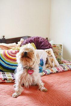 Christi's Creative & Crafty Austin Apartment   Apartment Therapy