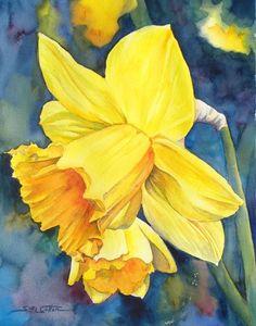 Daffodil web.jpg (509×648)  by Sue Lynn Cotton