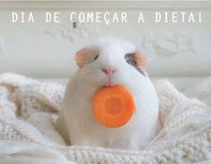 Segunda-feira!! Dia de começar a dieta! :) www.elegancebolsas.com.br #segundafeira #bomdia