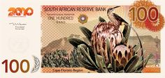 Currency Design — South African Banknote by Carly Hitchcock, via Behance