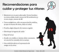 Cuida y protege tus riñones