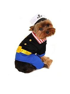 Sailor dog costume. Omg we can put Molly in this for Adam and Liz's rehearsal dinner lol
