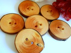 Wooden Buttons - White Spruce Tree Branch Buttons