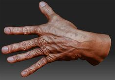 Who knows, maybe your hand sculpt will look just as good as this one by Scott Wells!  http://www.scottwells3d.com/blog/