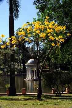 Parque Municipal de Belo Horizonte , Minas Gerais, Brazil