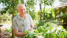 """""""Following a competition to find Windsor's Gardening Great, local resident Bruce Skeen has been crowned and will be heroed on the front cover of this year's 2017/18 Yellow Pages and White Pages Windsor book, along with his top gardening tip.""""  Great going Bruce!!!"""