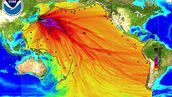 West Coast Senators: : Investigate the ongoing danger from the Fukushima nuclear reactors