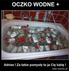Wiocha.pl - absurdy internetu Haha