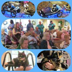 Juniper Village At Forest Hills: Teach an Old Cat New Tricks?!