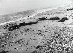 Massacre à Dieppe Dieppe Raid, Wwii, Military, Mountains, Nature, Travel, D Day, Naturaleza, Viajes