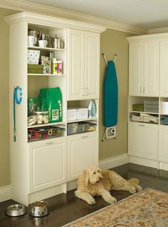 Even the dog needs a home for all his supplies. Add ClosetMaid's MasterSuite to your kitchen for some much needed pet storage.