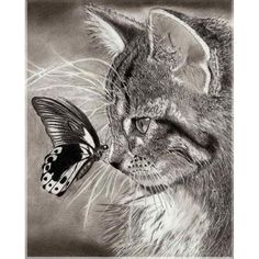 Aliexpress.com : Buy Diy Diamond Painting Square Diamond Mosaic animal cat Pictures Of Rhinestones Cross Stitch Home Decor Diamond Embroidery Icons from Reliable embroidery coat suppliers on Tranquila Diy Diamond Painting&Embroidery Home