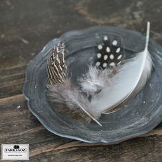 Patina and textures in shades of grey ~ feathers, pewter and worn grey paint by FARRAGOZ. Grey Paint, Shades Of Grey, Pewter, Feathers, Texture, Deco, Painting, Life, Art