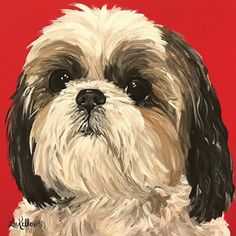 Shih Tzu Hund, Perro Shih Tzu, Shih Tzu Puppy, Shih Tzus, Art Paintings For Sale, Animal Paintings, Art Hippie, Dog Art, Pet Portraits
