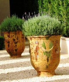 Garden Pots Melbourne - High Grade Outdoor Pots Available Australia Wide Large Garden Pots, Garden Urns, Large Pots, Outdoor Planters, Outdoor Gardens, Formal Gardens, Melbourne, Pot Jardin, Urn Planters